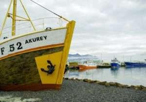 Fishing boats, Iceland