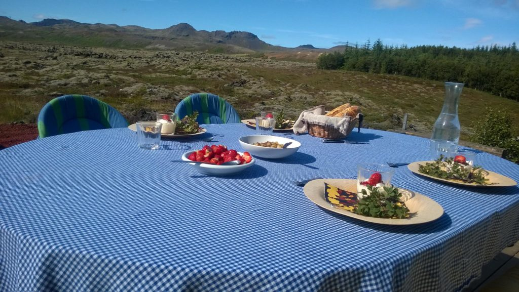 Dining with the Icelanders, Thingvellir