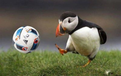 HUH – Football Iceland style now at The World Cup