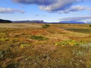 Autumn colours, Iceland