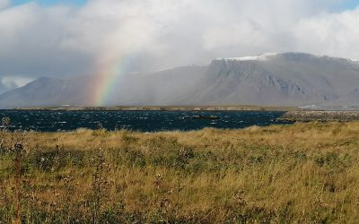 That is what Iceland does to you – Northern lights and autumn leaves – By Helga Stína